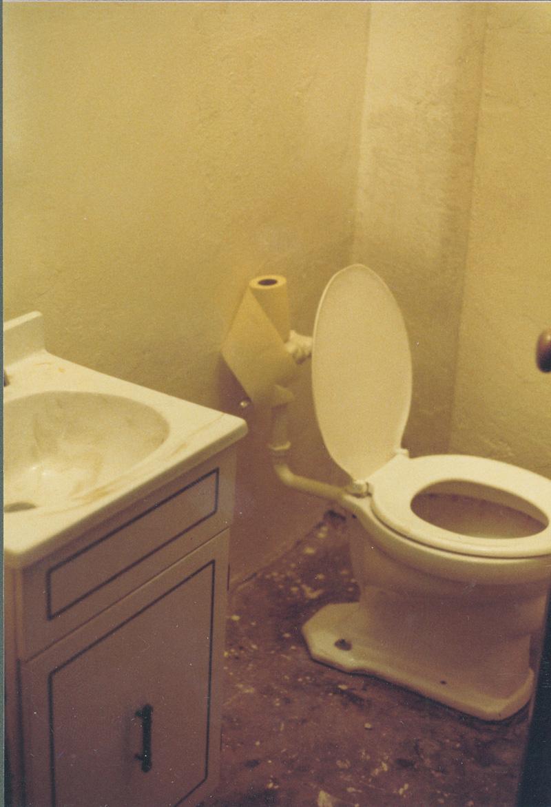 Giant toilet